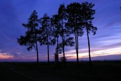 krajobrazy-stokrotka_20